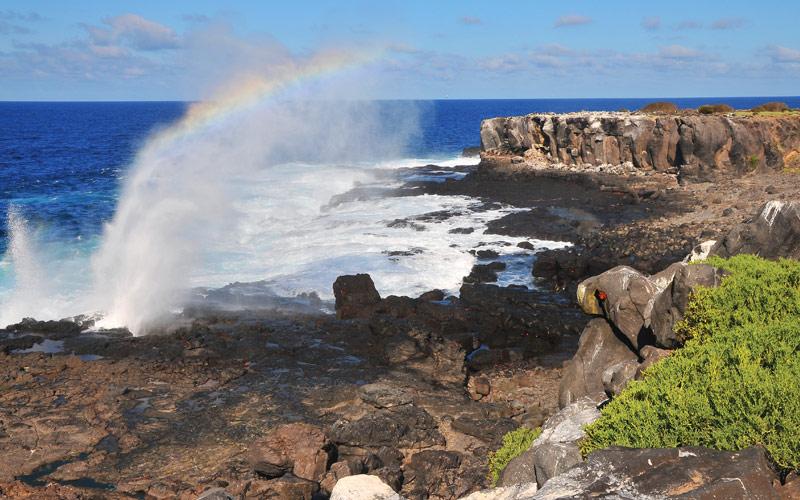 Silversea Galapagos Cruises Espanola Island