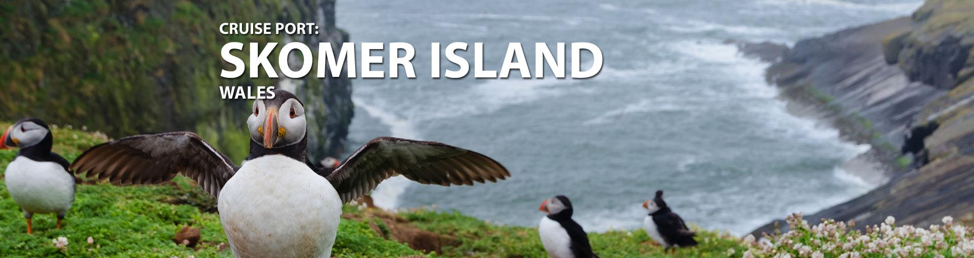 Cruises to Skomer Island, Wales