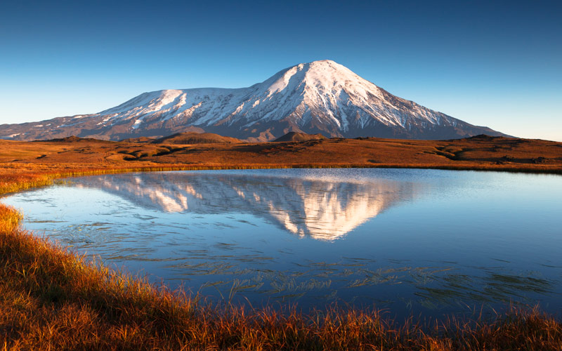 Tundra in Russia Kamchatka