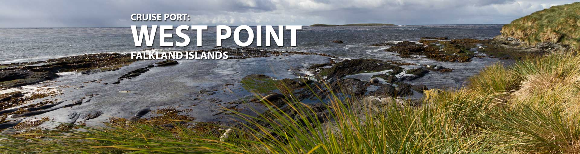 Cruises to West Point, Falkland Islands