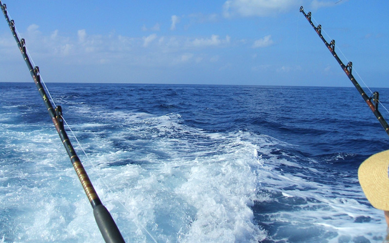 Sport Fishing in Costa Rica - Windstar Cruises