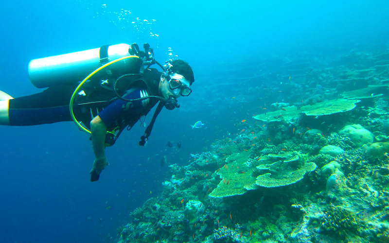 Caribbean SCUBA Diving - Windstar Cruises