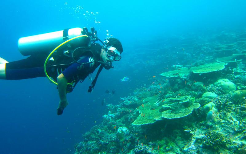 Caribbean SCUBA Diving - Windstar Cruises