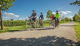 Bike Tours aboard AmaCerto