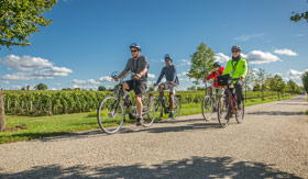 Bike Tours and Sightseeing aboard AmaSerena