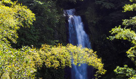 Azamara Club Cruises - Waterfall in Dominica