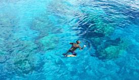 Snorkel in Papeete's clear waters