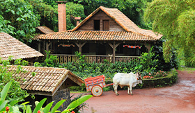 Azamara Club Cruises Traditional Costa Rican Home with ox cart