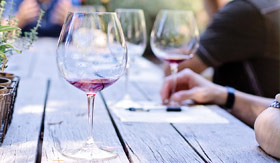 Wine Tasting in Lanzarote