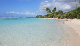 Guadeloupe Beach - Holland America