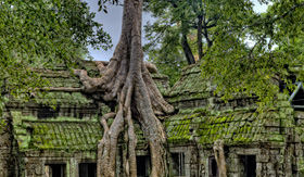 Celebrity Cruises Angkor Wat Temple