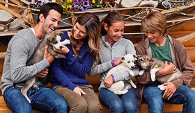 Celebrity Cruises family playing with puppy husky dogs