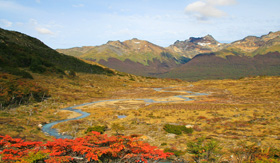 Celebrity Cruises National Park near Ushuaia in Tierra del Fuego Argentina