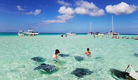Celebrity Cruises stingrays at the sandbar off Grand Cayman
