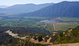 Celebrity Cruises view of Casablanca Valley in Chile