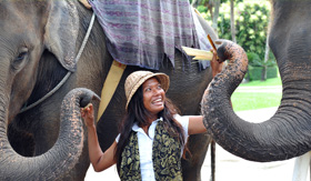 Celebrity Cruises Woman Feeding Elephant