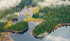 Crystal Cruises aerial view of Tongass Forest Alaska