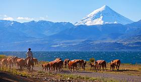 Cunard Line Gauchos in Patagonia, Argentina