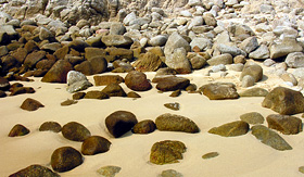 Cunard Line stony beach in Hualtulco Mexico