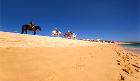Holland America Line horse riding along the beach in Cabo San Lucas