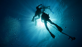 Holland America Line silhouettes of scuba divers in Mexico