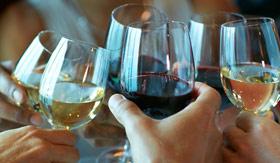 Wine Tasting aboard ms Nieuw Statendam
