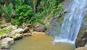 Yelapa Forest waterfall