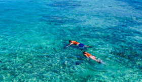 Snorkel the Crystal Clear Waters of the Grand Cayman Islands