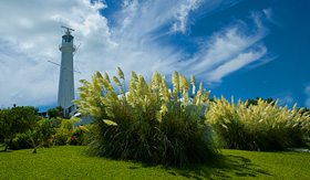 Norwegian Cruise Line Gibbs Hill Lighthouse Bermuda
