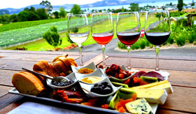 Wine Tasting in New Zealand