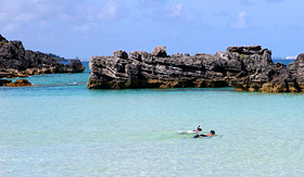 Norwegian Cruise Line snorkeling in Bermuda