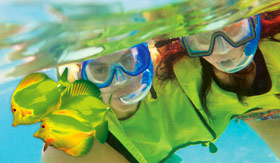 Couple Snorkeling - Norwegian Cruise Line