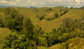Oceania Cruises landscape Waitomo king country New Zealand