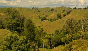 Oceania Cruises landscape Waitomo king country New Zealand