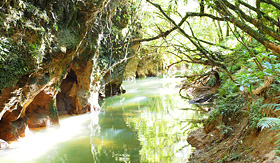 Princess Cruises the stream outside the Waitomo Glowworm caves