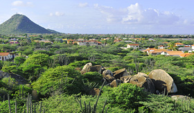 Regent Seven Seas Cruises cacti landscape view from Casibari Rock formation Aruba