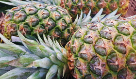 Regent Seven Seas Cruises - Pineapple
