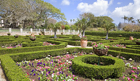 Royal Caribbean Bermuda Botanical Gardens hedges