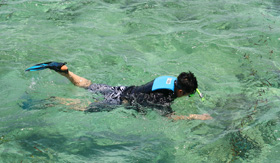 Royal Caribbean - Boy Snorkeling