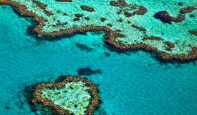 Royal Caribbean Great Barrier Reef Austrailia