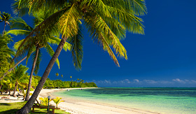 Royal Caribbean palm trees and a white sandy beach at Fiji Islands