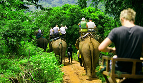 Royal Caribbean tourists ride elephants through jungle
