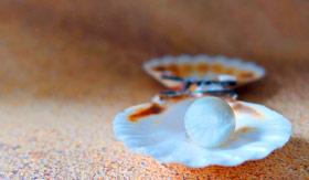 Pearl in clam shell on beach