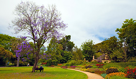Silversea Cruises botanic garden in Melbourne Victoria Australia