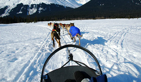Silversea Cruises sled dog adventure in Alaska
