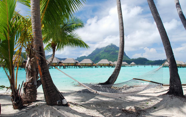 South Pacific Cruises from $599.00!*