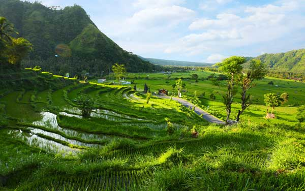 Southeast Asia Shore Excursions