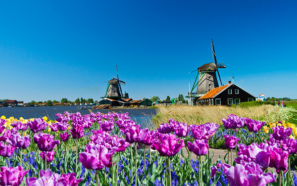 Uniworld River Cruises-Amsterdam, The Netherlands