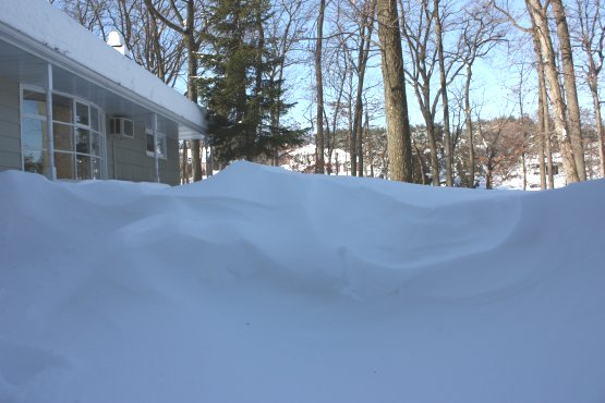 Blizzard of 2010