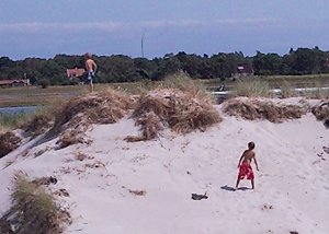 Frans' sons climbing over the dunes